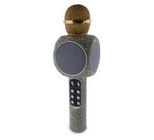 WSTER-WS-1816 Karaoke FM Radio