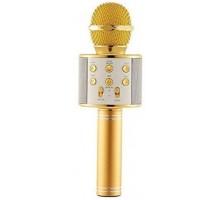 WSTER-WS-858 Karaoke Mikrofon